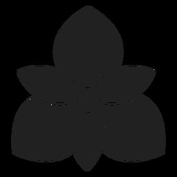 Orchidee Blume Symbol