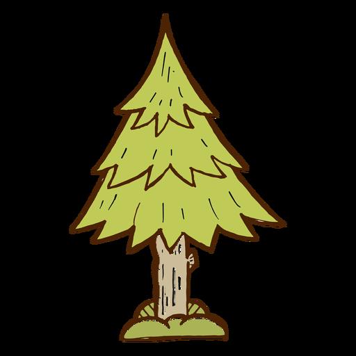 Icono de árbol de pino camping Transparent PNG