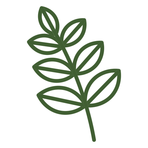 Simple leaves  on branch icon Transparent PNG