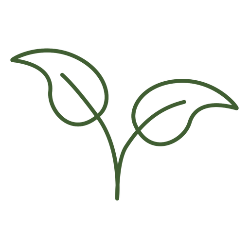Simple leaves icon Transparent PNG