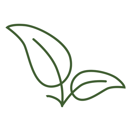 Simple leaves icon image Transparent PNG