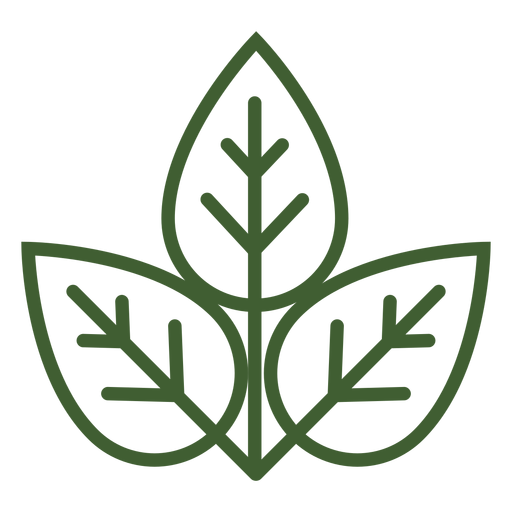 Three leaves icon Transparent PNG