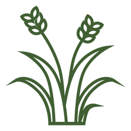 Wheat grass icon
