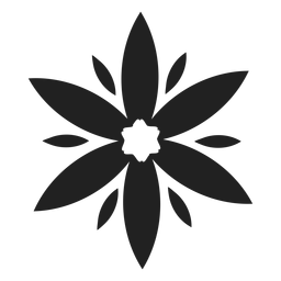 Wild cocumber flower vector