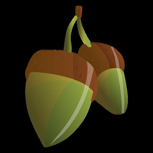 Ilustración de bellotas Transparent PNG