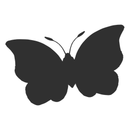Big butterfly flying silhouette