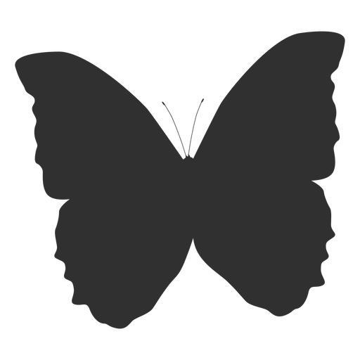 Butterfly animal silhouette Transparent PNG