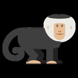 Ilustración de mono capuchino