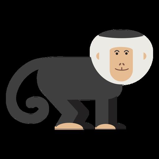 Ilustración de mono capuchino Transparent PNG