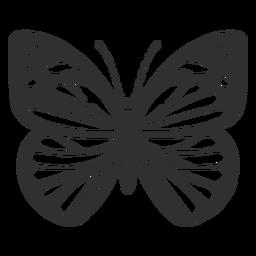 Chiricahua silueta mariposa blanca