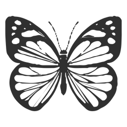 Chiricahua white butterfly silhouette