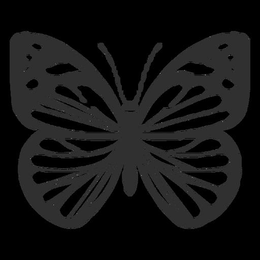 Silueta de mariposa blanca chiricahua