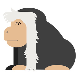 Colobus monkey illustration