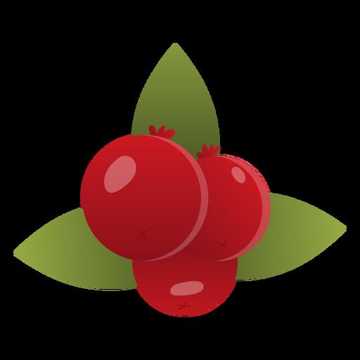 Cranberries illustration Transparent PNG