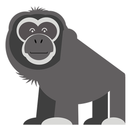 Gibbon monkey illustration