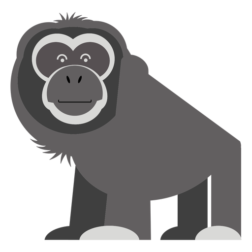 Gibbon monkey illustration Transparent PNG