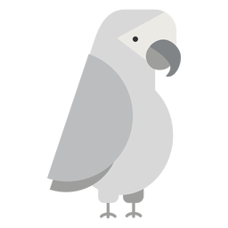 Ilustração de pássaro papagaio cinza