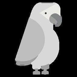 Ilustración de pájaro loro gris