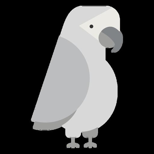 Ilustración de pájaro loro gris Transparent PNG