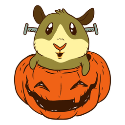 Guinea pig in pumpkin cartoon