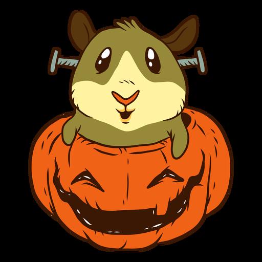 Conejillo de Indias en dibujos animados de calabaza Transparent PNG