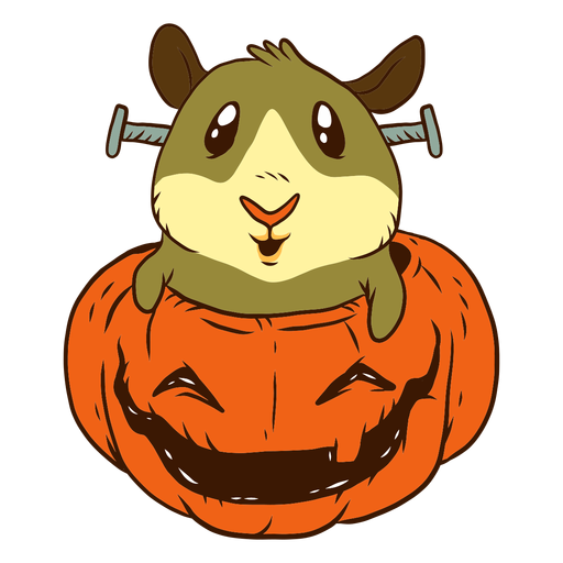 Guinea pig in pumpkin cartoon Transparent PNG