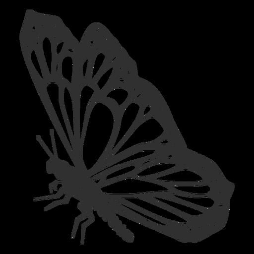 Monarchfalter Seitenansicht Silhouette Transparent PNG
