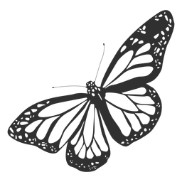 Monarch butterfly silhouette