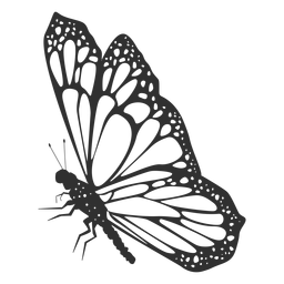 Monarch butterfly still silhouette