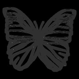 Morpho polyphemus mariposa silueta
