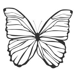 Silhueta de borboleta Morpho polyphemus