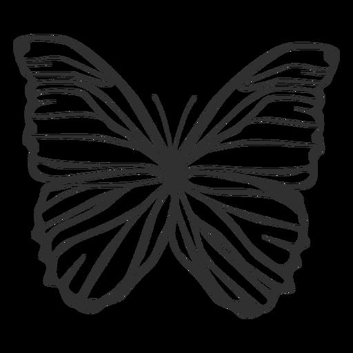 Silhueta de borboleta Morpho polyphemus Transparent PNG