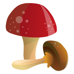 Mushrooms illustration