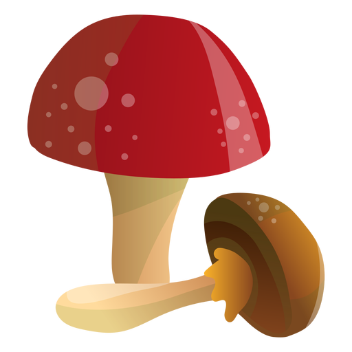 Mushrooms illustration Transparent PNG
