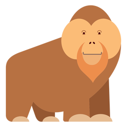 Orangutan monkey illustration