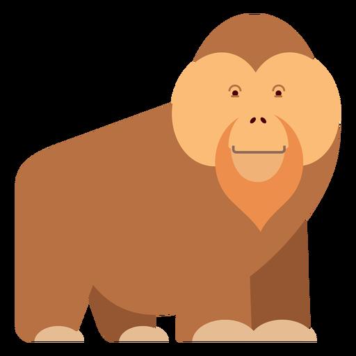 Ilustración de mono orangután Transparent PNG