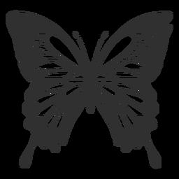 Papilio-ulysses-Schmetterlingsschattenbild