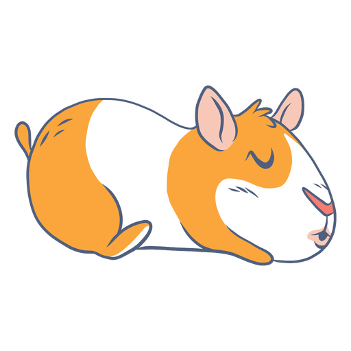 Sleeping guinea pig cartoon Transparent PNG