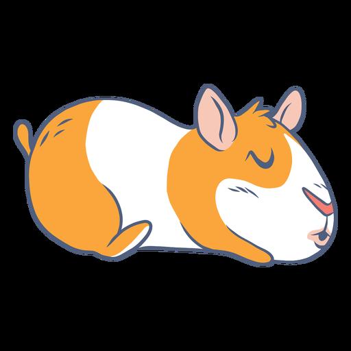 Sleeping guinea pig cartoon