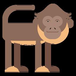 Spider monkey illustration
