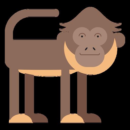 Spider monkey illustration Transparent PNG