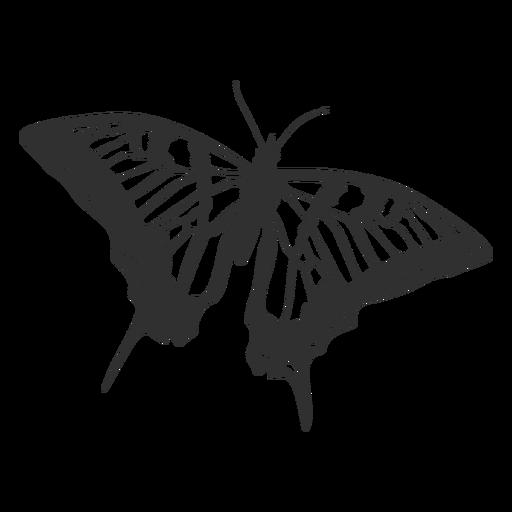 Silhueta de borboleta rabo de andorinha tigre Transparent PNG