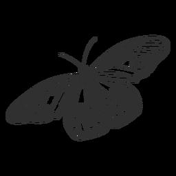 Silhueta de borboleta de ninfa de árvore