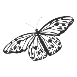 Tree nymph butterfly silhouette