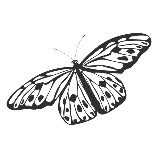 Tree nymph butterfly silhouette Transparent PNG