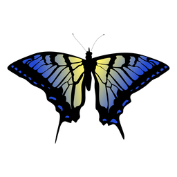 Blue and yellow butterfly design