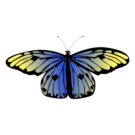 Blue detailed butterfly design Transparent PNG