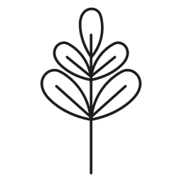 Branch with palmate leaves icon