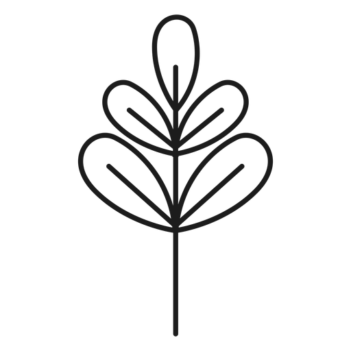 Branch with palmate leaves icon Transparent PNG