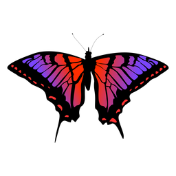 Butterfly insect vector